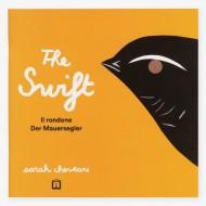 The swift. Il rondone